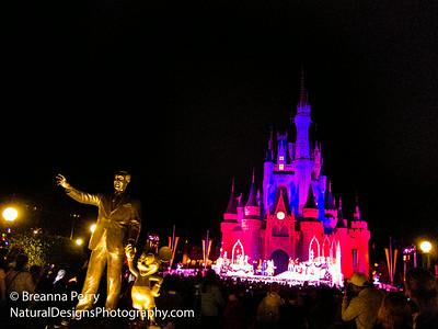 Disney/ Theme Parks