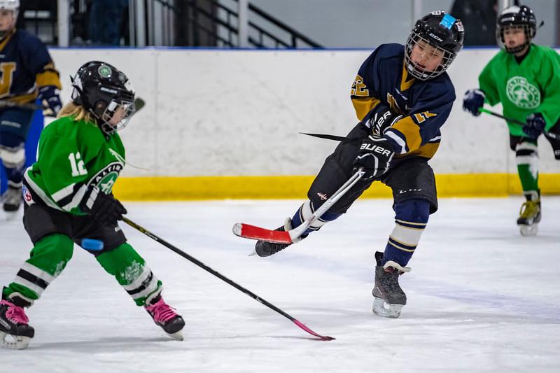 2019-02-03-Ryan-Naughton-Hockey-94.jpg