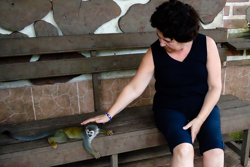 mom-at-monkey-rescue-centre_4894133178_o.jpg