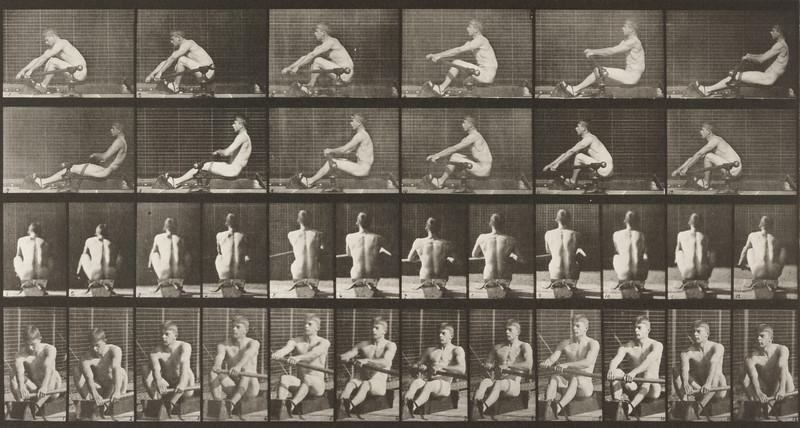 Nude man rowing (Animal Locomotion, 1887, plate 327)