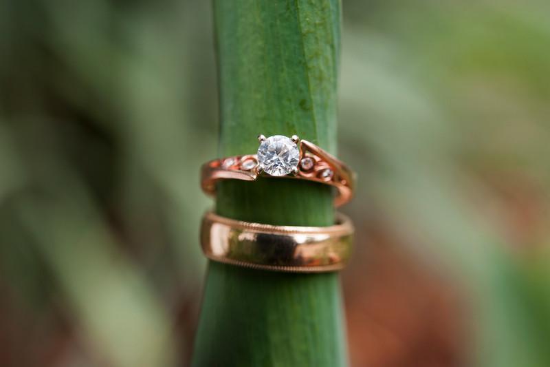 hershberger-wedding-pictures-387.jpg