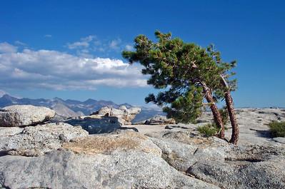 Yosemite 1999-2004