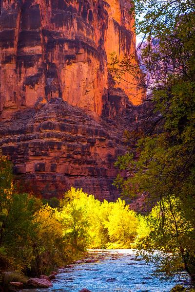 Arizona-169.jpg