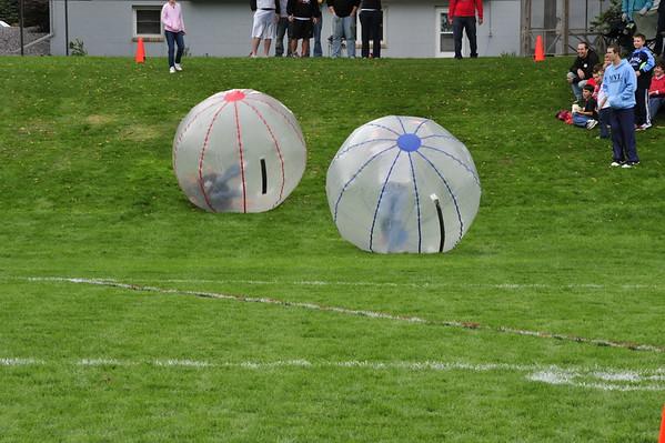 Hamsterball Races