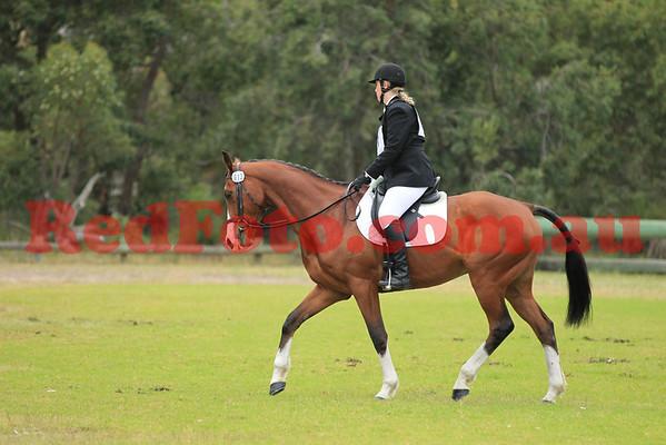 2012 10 14 Wallangarra ODE 3 Dressage C Grade