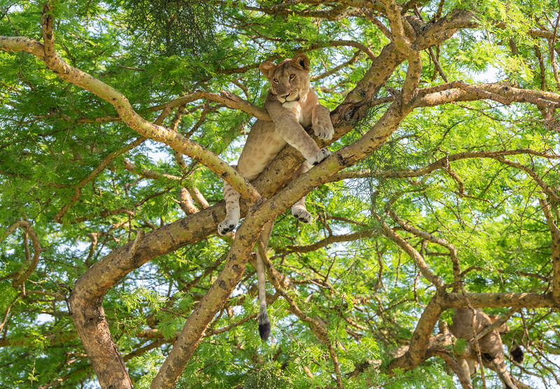 Uganda_T_QE-1595.jpg