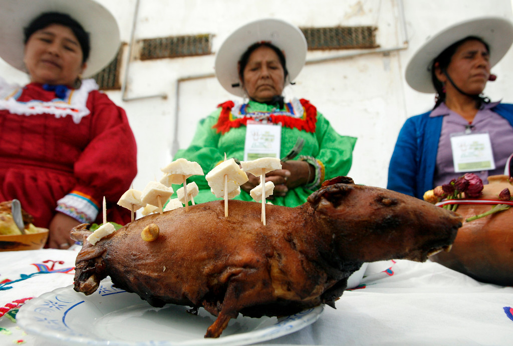 . Andean women display a dish of roasted cuy during a guinea pig festival in Huacho, northern Lima, July 20, 2008. The one-day festival includes an animal show and a food and fashion contest which features the guinea pig, native to the Andes. Cuy, a traditional fried or roasted guinea pig dish, dates back at least fifteen centuries to pre-Incan times. REUTERS/Mariana Bazo