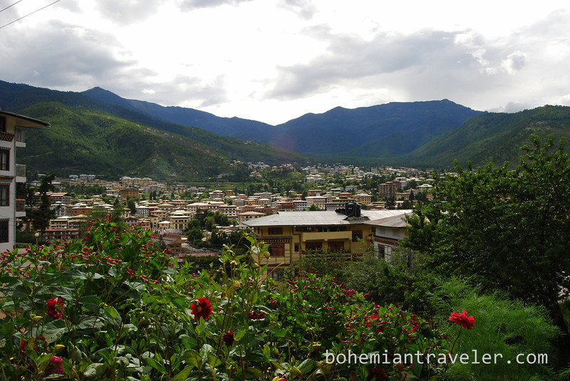 flowers and Thimphu view.jpg