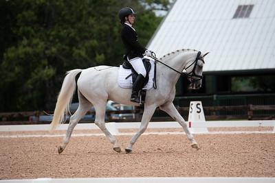 Horse 406
