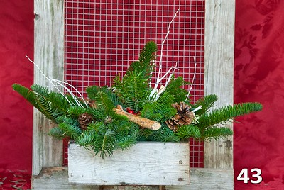 2015 Fall & Holiday Decor