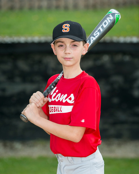 2018 Somerset Little League Team Photos