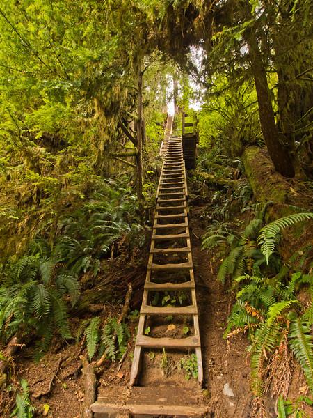Ladders north Sandstone creek