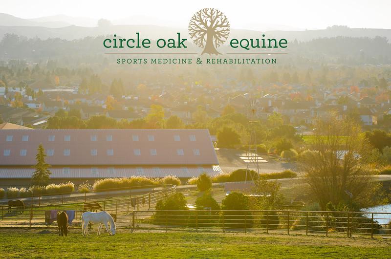 Circle Oak Equine Sports Medicine & Rehabilitation