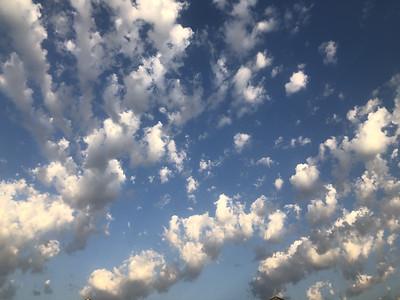 Sky's
