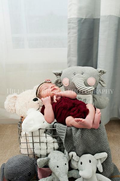 Hillary_Ferguson_Photography_Carlynn_Newborn040.jpg