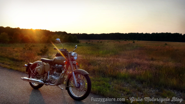 fuzzygalore thursday night ride on the royal enfield