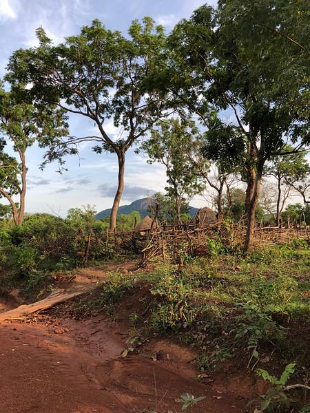 Guinea-100.jpg