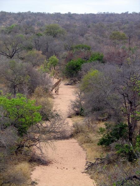 Belule Reserve (14).jpg