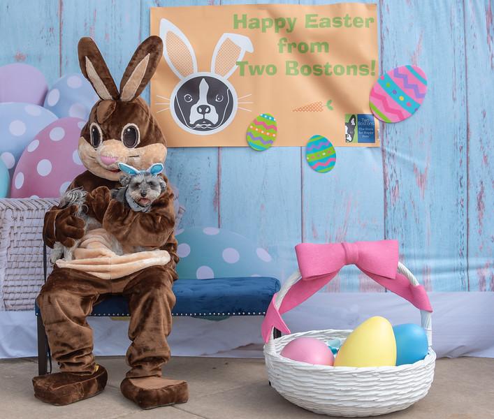 Easter2019TwoBostons-8263.jpg