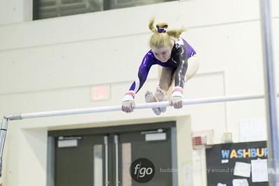 2-7-18 Twin Cities Gymnastics Meet