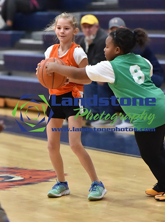 Delmar Youth League Basketball 01/28/17