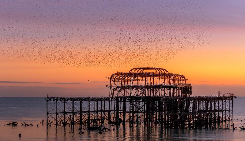 171117_Brighton Beach_Sunset_0013.jpg