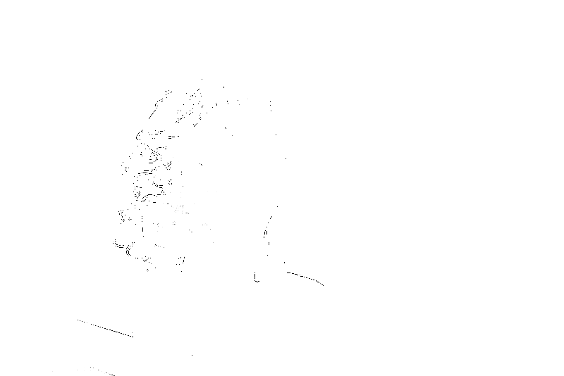 DSC05677.png