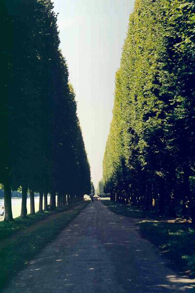 Road at Castle 2.jpg