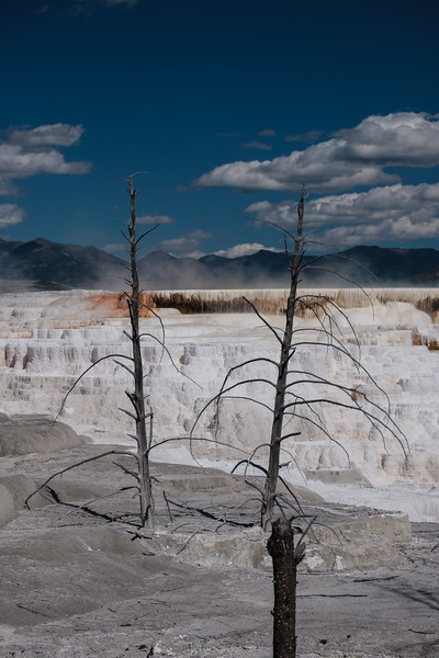 Mammoth-Hot-Springs-Yellowstone-Mroczek-2862.jpg