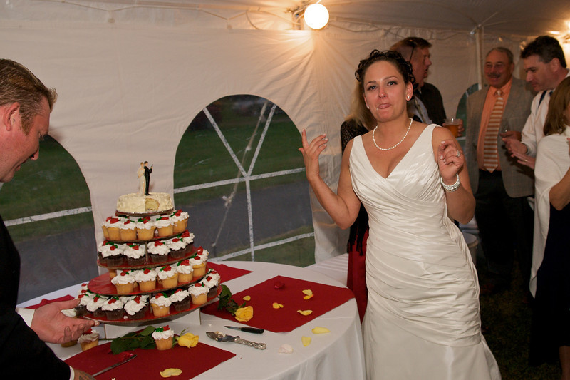erin_dave_wedding_261.jpg