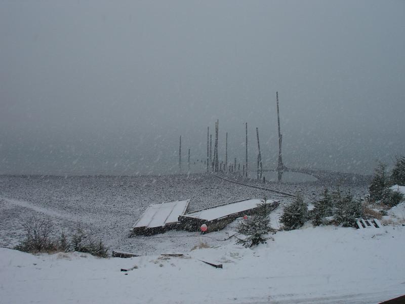 Alaska 2008 068.jpg