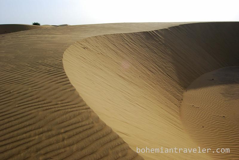 desert sand dunes (5).jpg