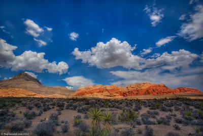 U.S.A. National Parks