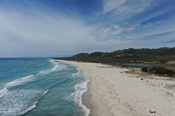 Berchida - Vacche Spiaggia - Drone - Foce - 15.05.2020
