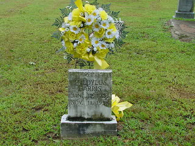Walnut Grove Baptist Church & Cemetery