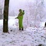 Les Deux Alpes 1991