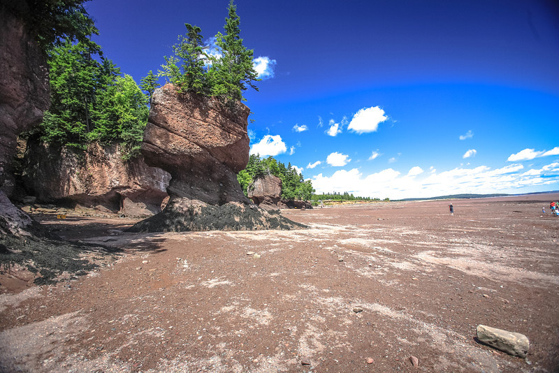 Nova Scotia-380.jpg