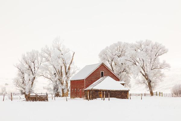 Winter in Gunnison County