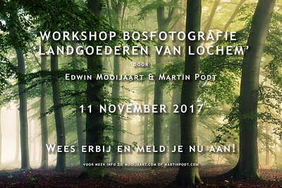 2017-11-11 Workshop bosfotografie (Dutch)