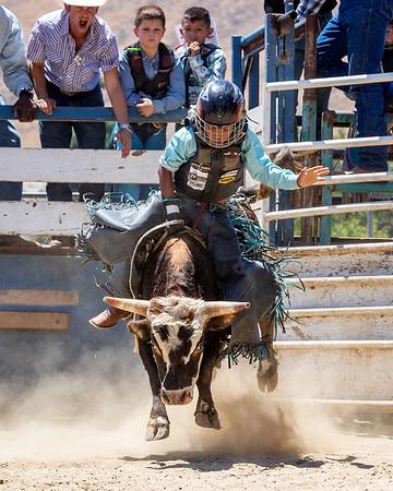 AK Bucking Bulls - June 2019