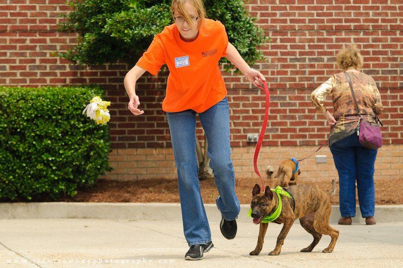 20110514 PetSmart Adoption Event-47.jpg