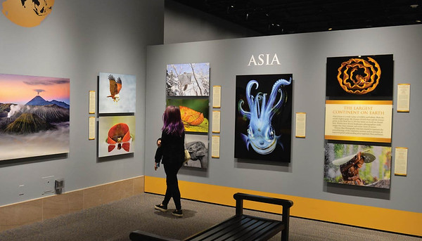 Exhibition at Smithsonian Museum of Natural History in USA