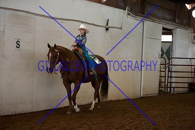 Western Pleasure and Equitation WalkTrot  110508