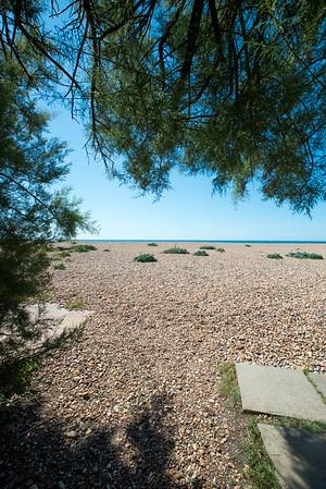 Janine Lowe Beach-253.jpg