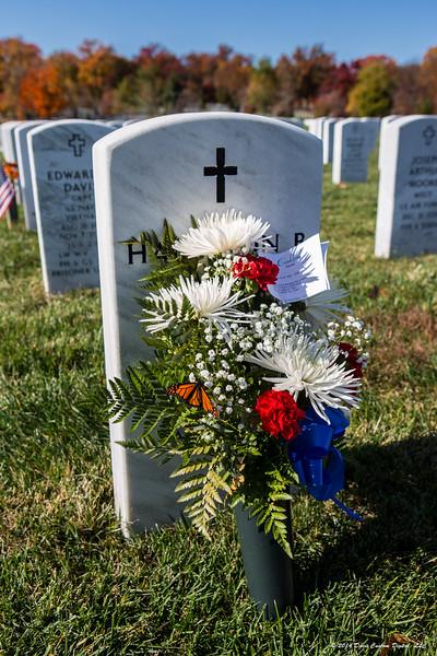 2014 Veterans' Day (plus one)