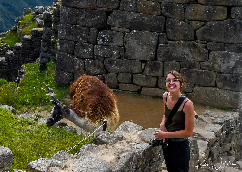 2018 Machu Picchu-62.jpg