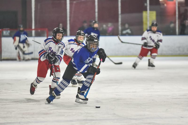 Leafs-54.jpg