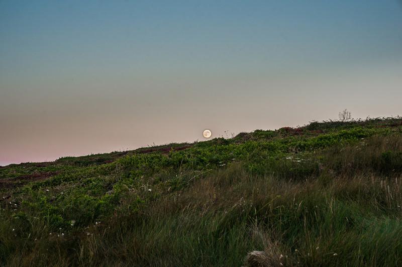 La luna llena sobre campo de toxos