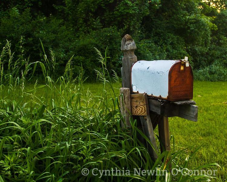 final+mailbox+%281+of+1%29-3356917033-O.jpeg