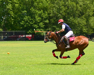 2019 District Polo Cup